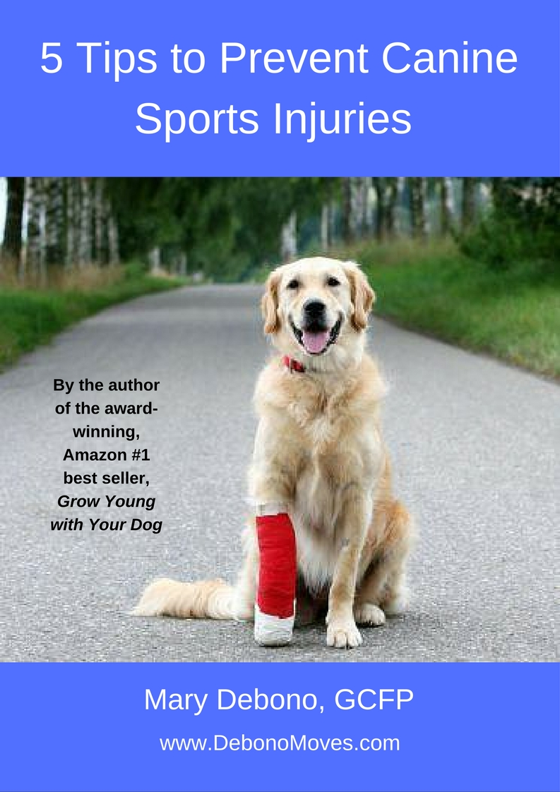 Cover 5 Tips to Prevent Canine Sport Injuries e-book JPG