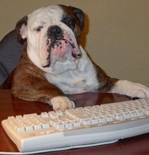 Dog-Using-The-Computer-Main