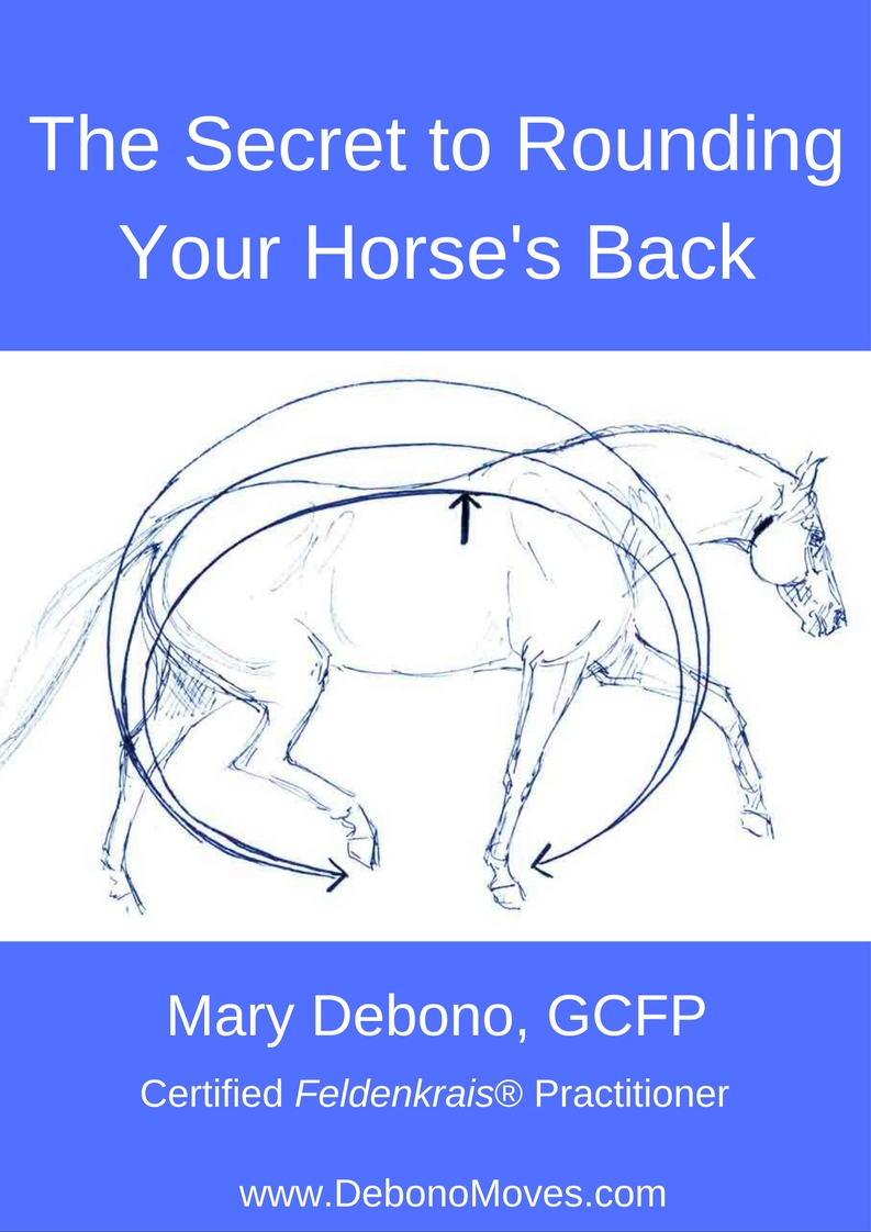 The Secret to Rounding Your Horse's Back cover (1)